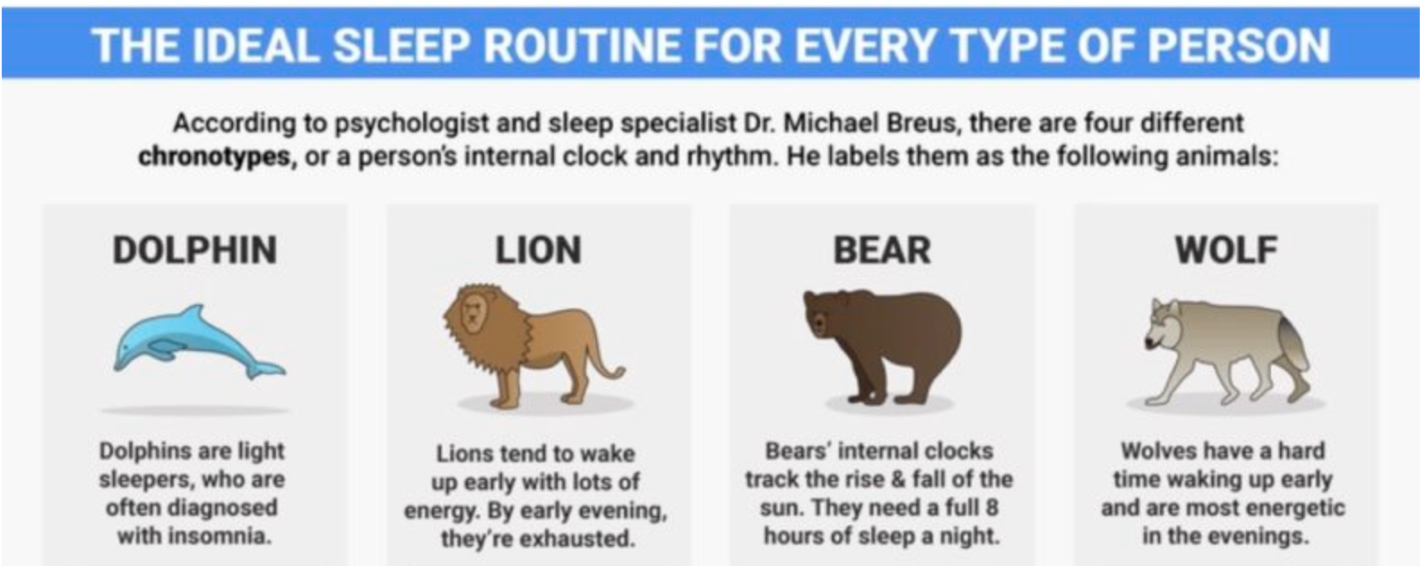 The Ideal Sleep Routine For Every Type Of Person